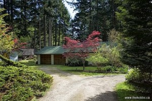 Back To The Land: This casual country rancher enjoys a sunny southern exposure,fenced vegetable garden, small orchard and substantial wood lot on five private acres.